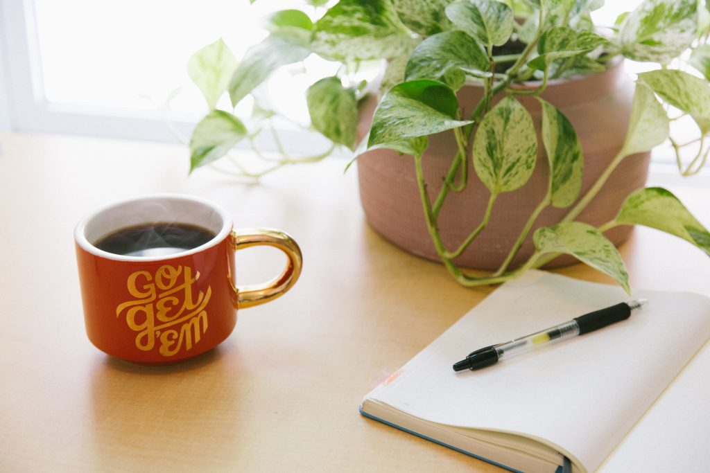 Pot plant, notebook and coffee